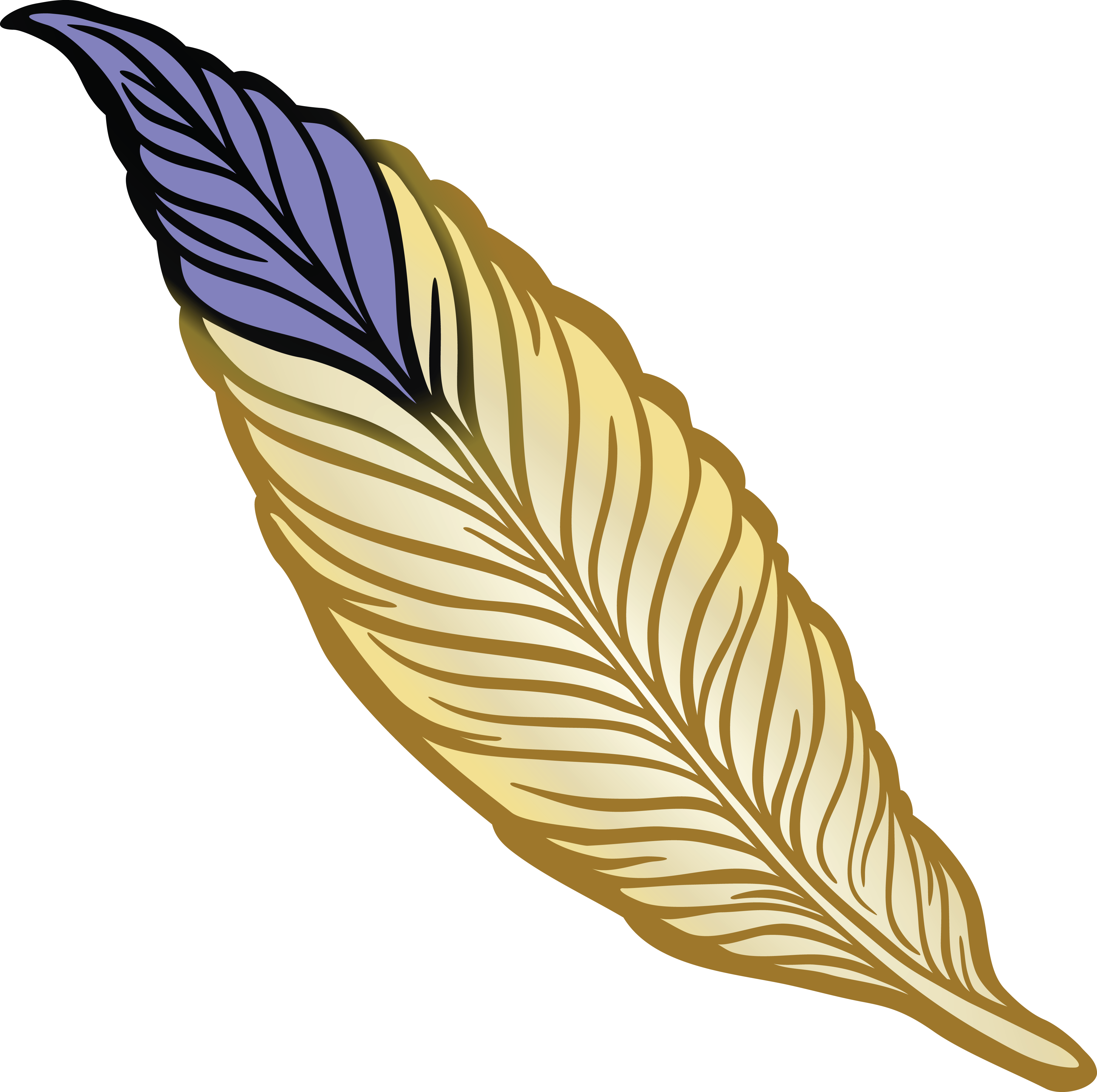 Feather clipart creative.  free of a