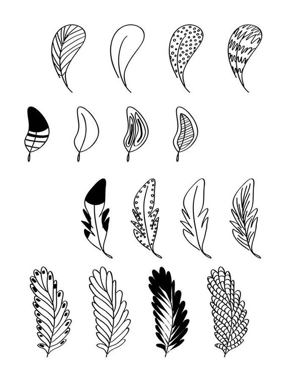 hand drawn. Feathers clipart doodle
