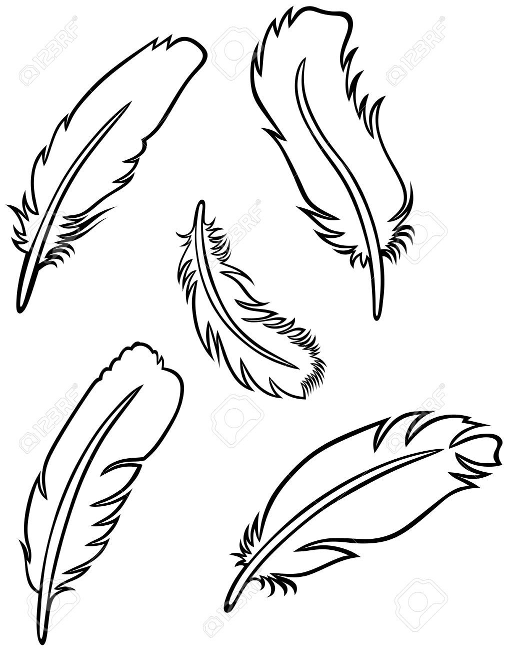 Drawings google search bike. Feather clipart easy