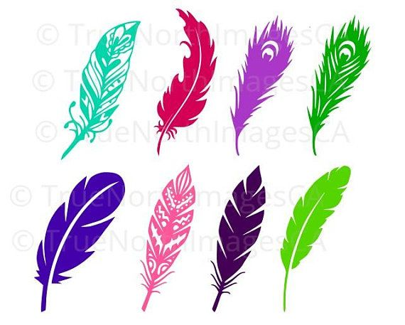 Svg silhouette vector . Feather clipart file