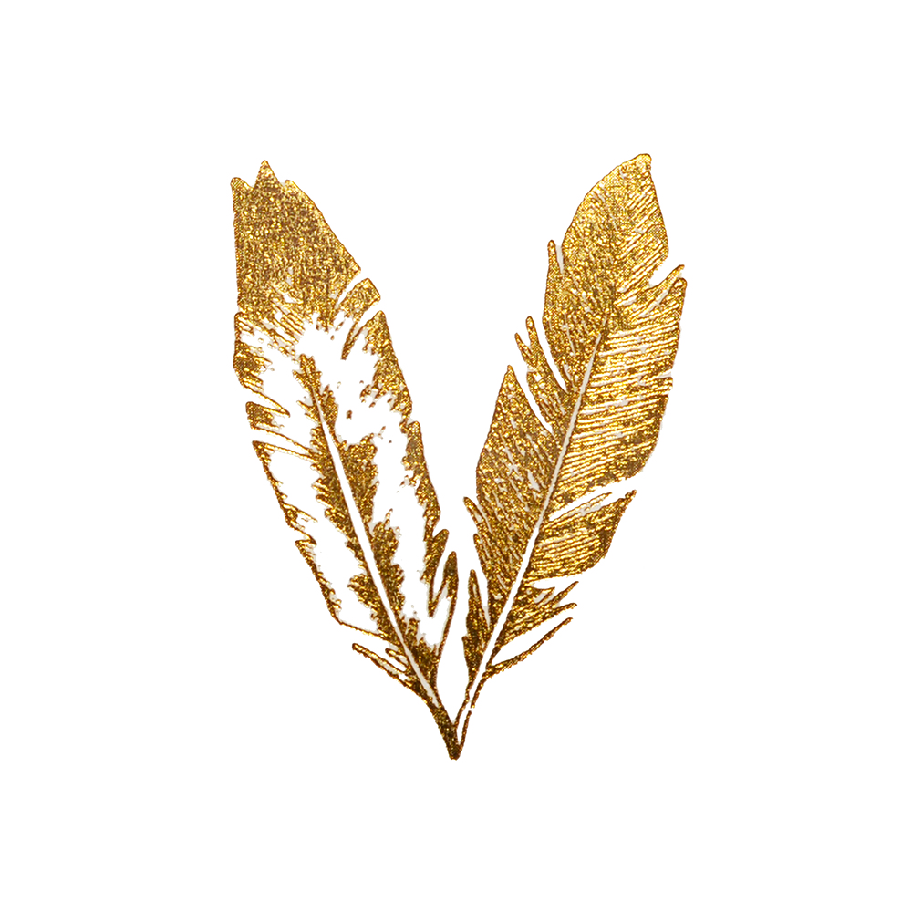 collection of gold. Feather clipart glitter
