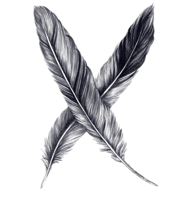 Drawing sketch png download. Feather clipart pencil
