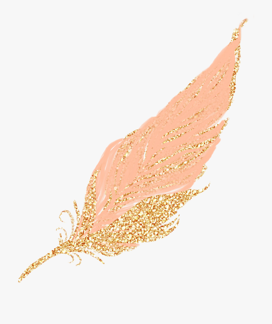 Feather clipart rose gold. Feathers pastel golden transparent