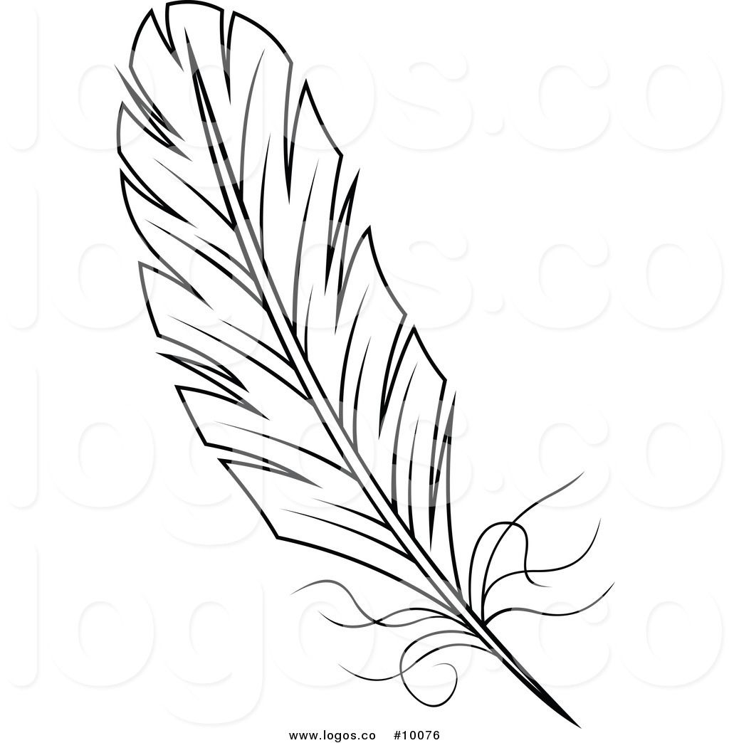 Vector of a black. Feather clipart royalty free