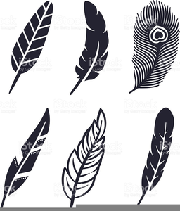 Feather clipart royalty free. Turkey images at clker