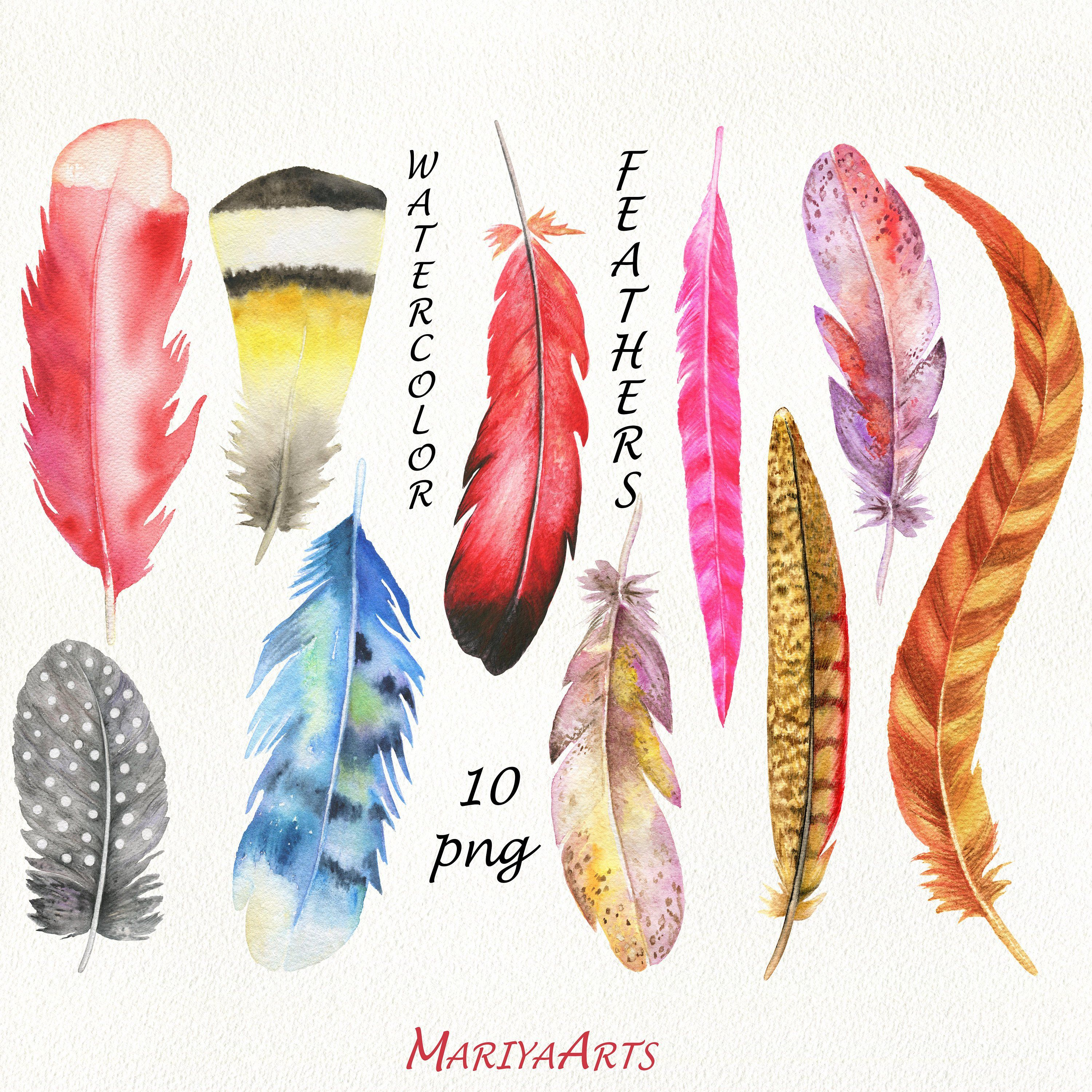 Feather clipart rustic. Watercolor feathers clip art