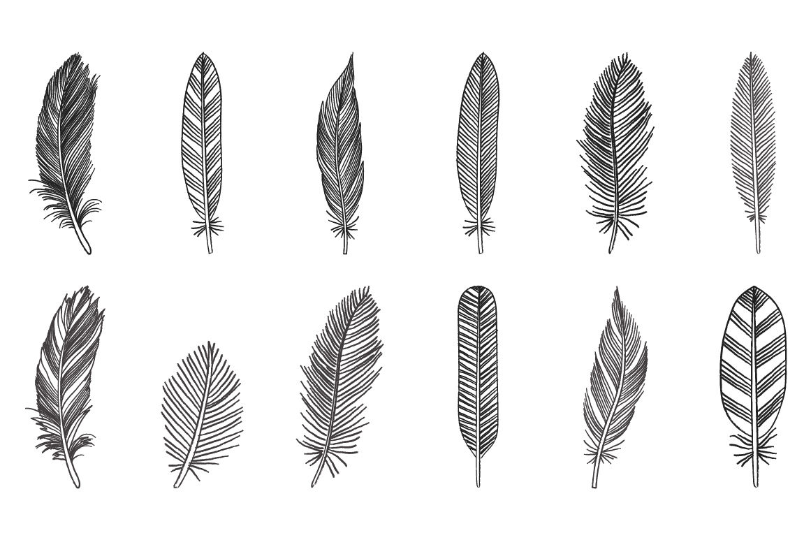 Designs ai png eps. Feather clipart rustic