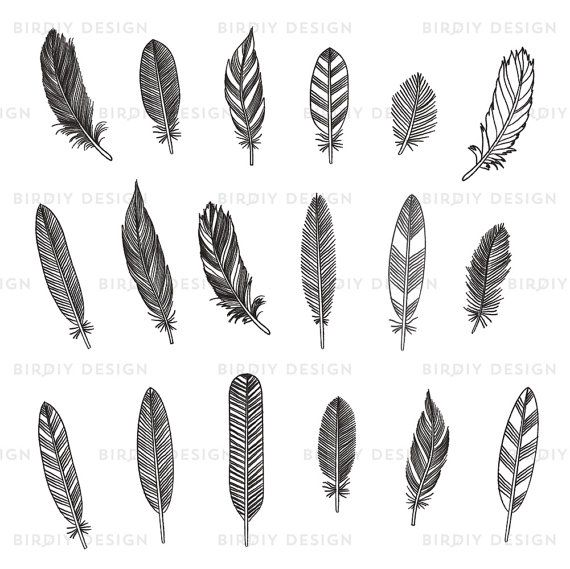 Feather clipart rustic. Woodland by