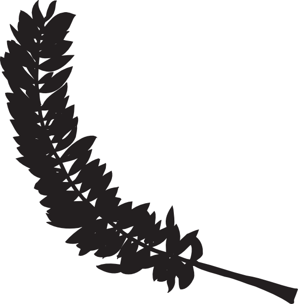 Feathers clipart silhouette. Feather clip art at