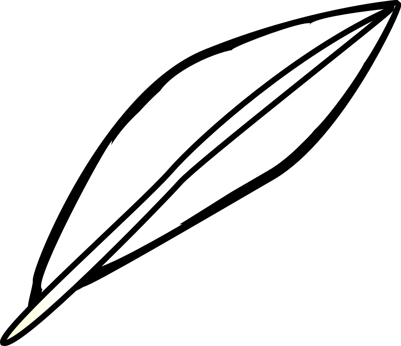 Bird lightweight png image. Feather clipart simple