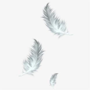 Stencil icon free . Feather clipart three