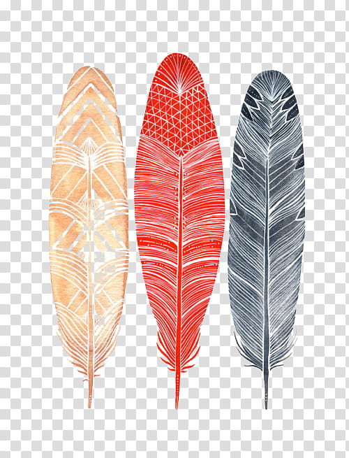 S black red and. Feather clipart three