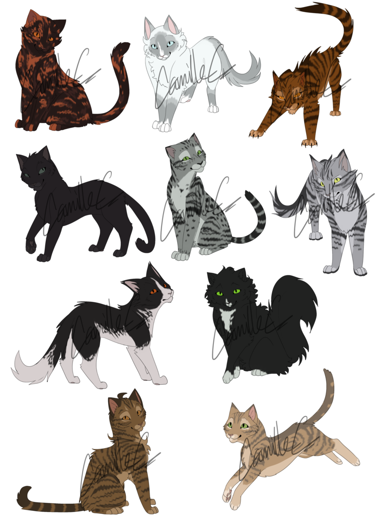 Cats adoptables birds of. Warrior clipart feather