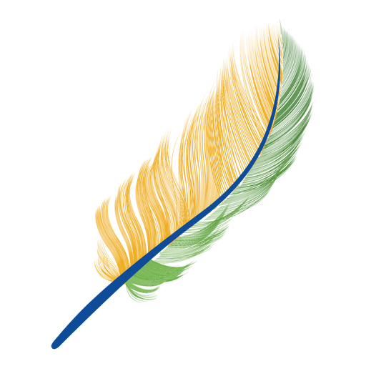 Brazil flag transparent svg. Feather vector png