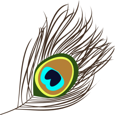 Feather vector png. Download peacock free transparent