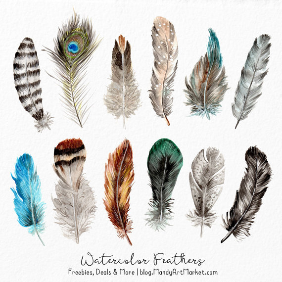 Watercolor watercolour hand . Feathers clipart
