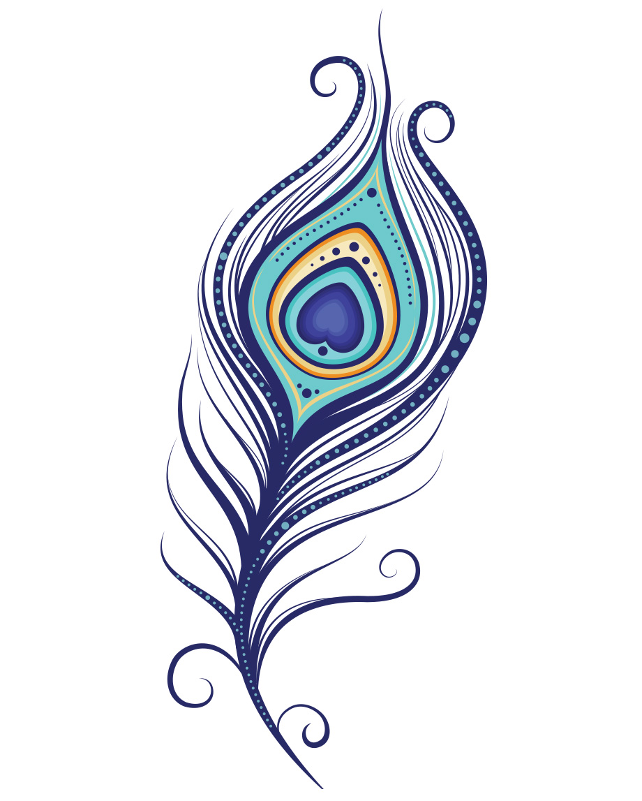 feather clip art. Peacock clipart fether