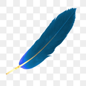 Free download bird falling. Feathers clipart blue feather
