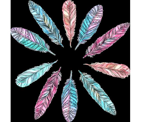 Feathers clipart doodle. Doodles illustrations pinterest