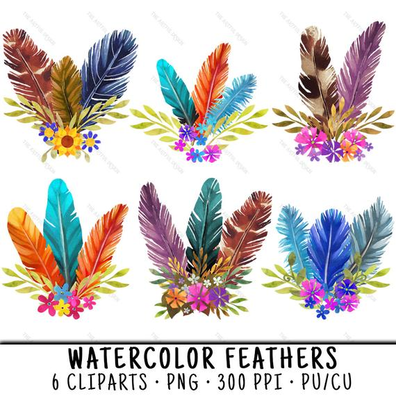 Watercolor feather clip art. Feathers clipart fether