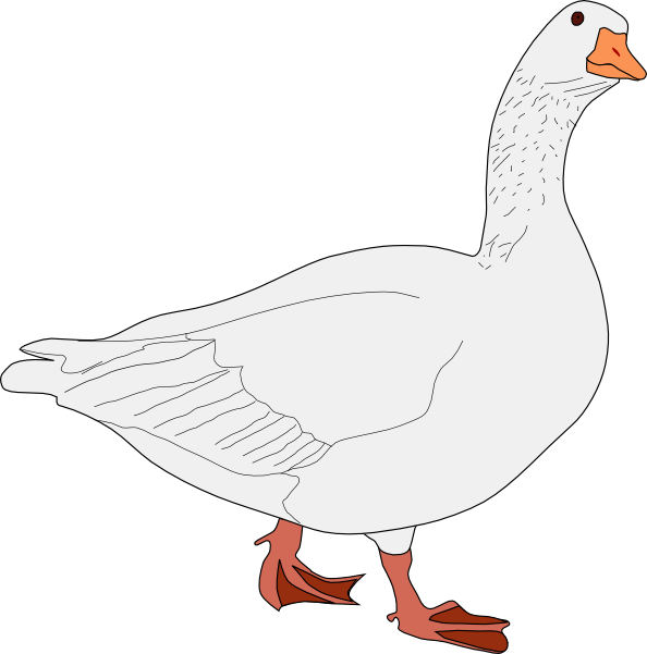 Bird clip art at. Feathers clipart goose feather