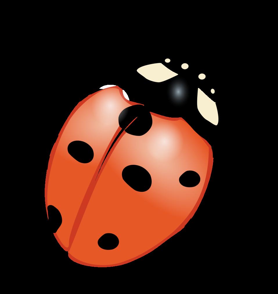Ladybugs clipart small. Public domain clip art