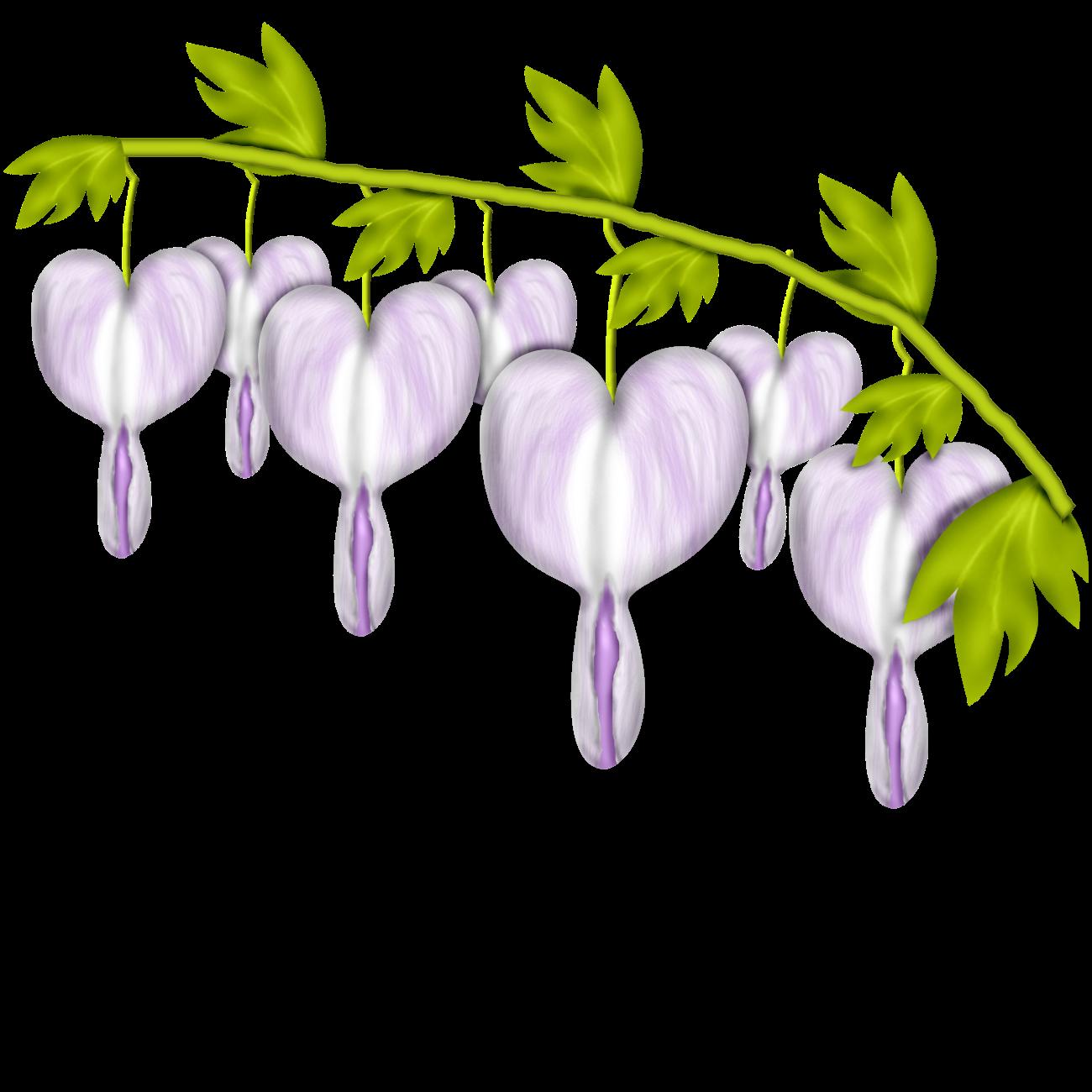 Gerdas scraps category svet. February clipart february flower