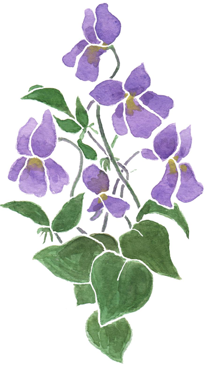 Judy adamson s art. February clipart february flower