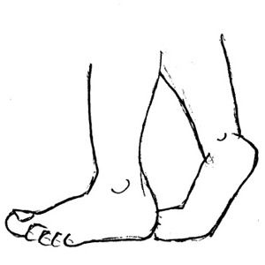 Foot free feet clip. Legs clipart two