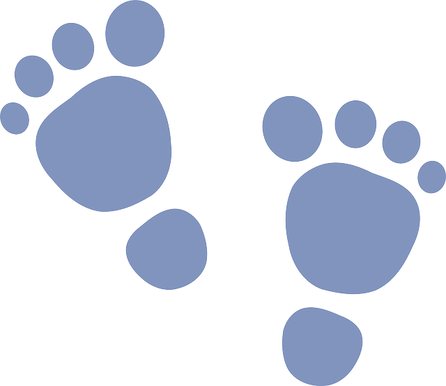 Footsteps clipart colored. Free image on pixabay