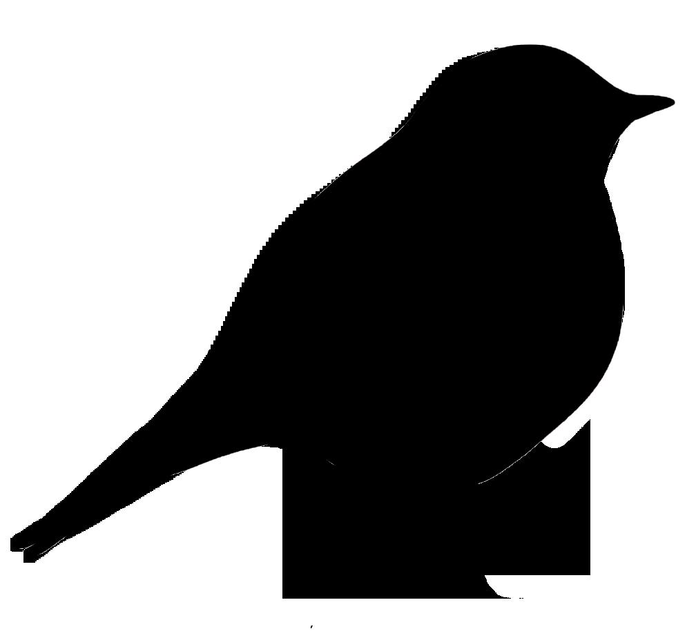 Feet clipart bird. Blackbird pinart fling animal
