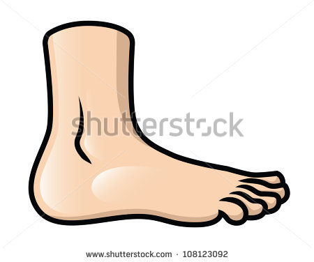 Feet clipart cartoon. Images free download best