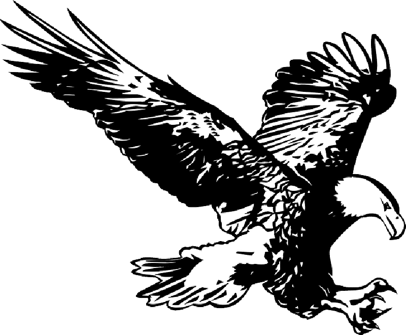 Free pictures clip arts. Feet clipart eagle