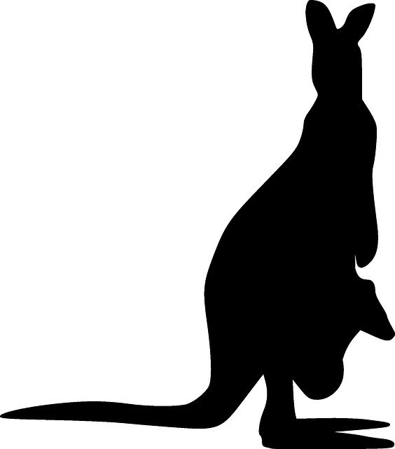 Kangaroo clipart cartoon. Animal silhouette at getdrawings