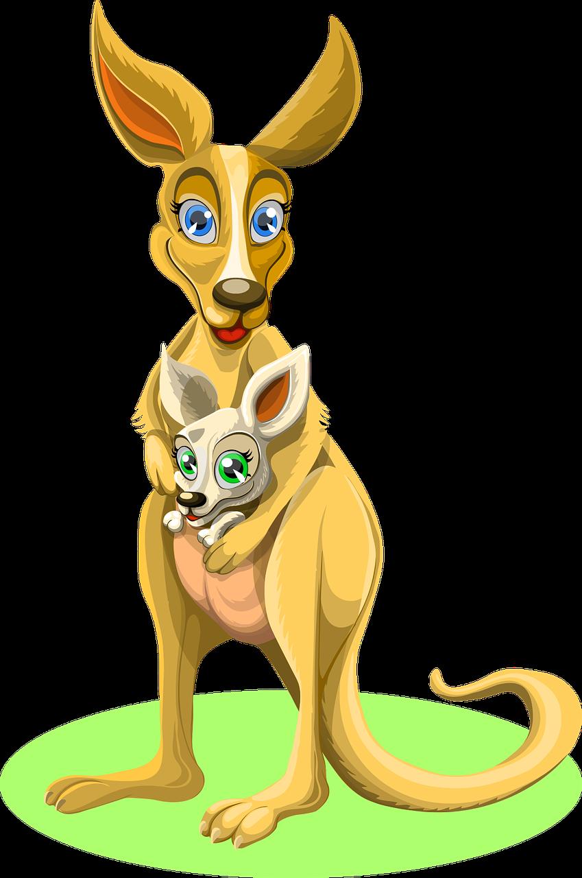 Australia baby mama and. Kangaroo clipart zoo animal
