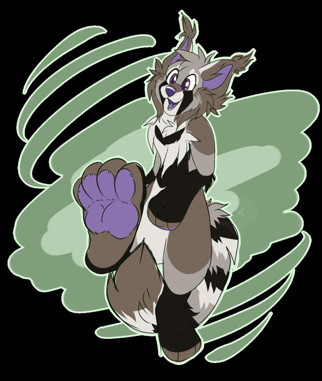 Foot raccoon