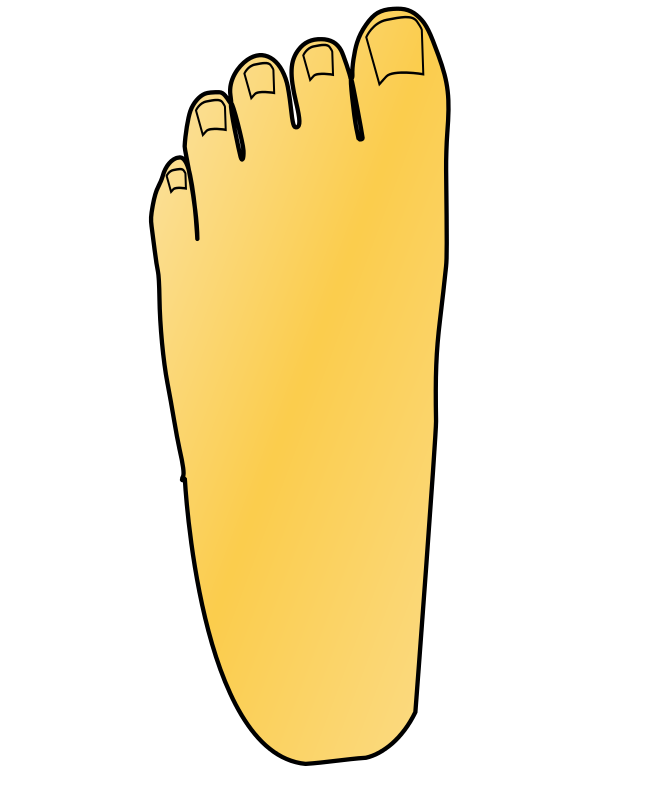 collection of transparent. Foot clipart side view