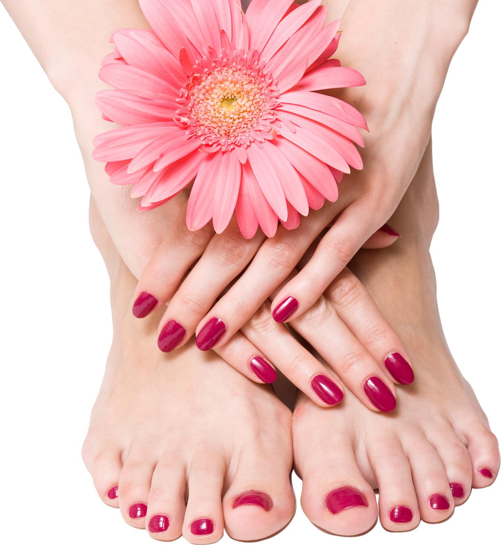 Nails png image purepng. Foot clipart toenails