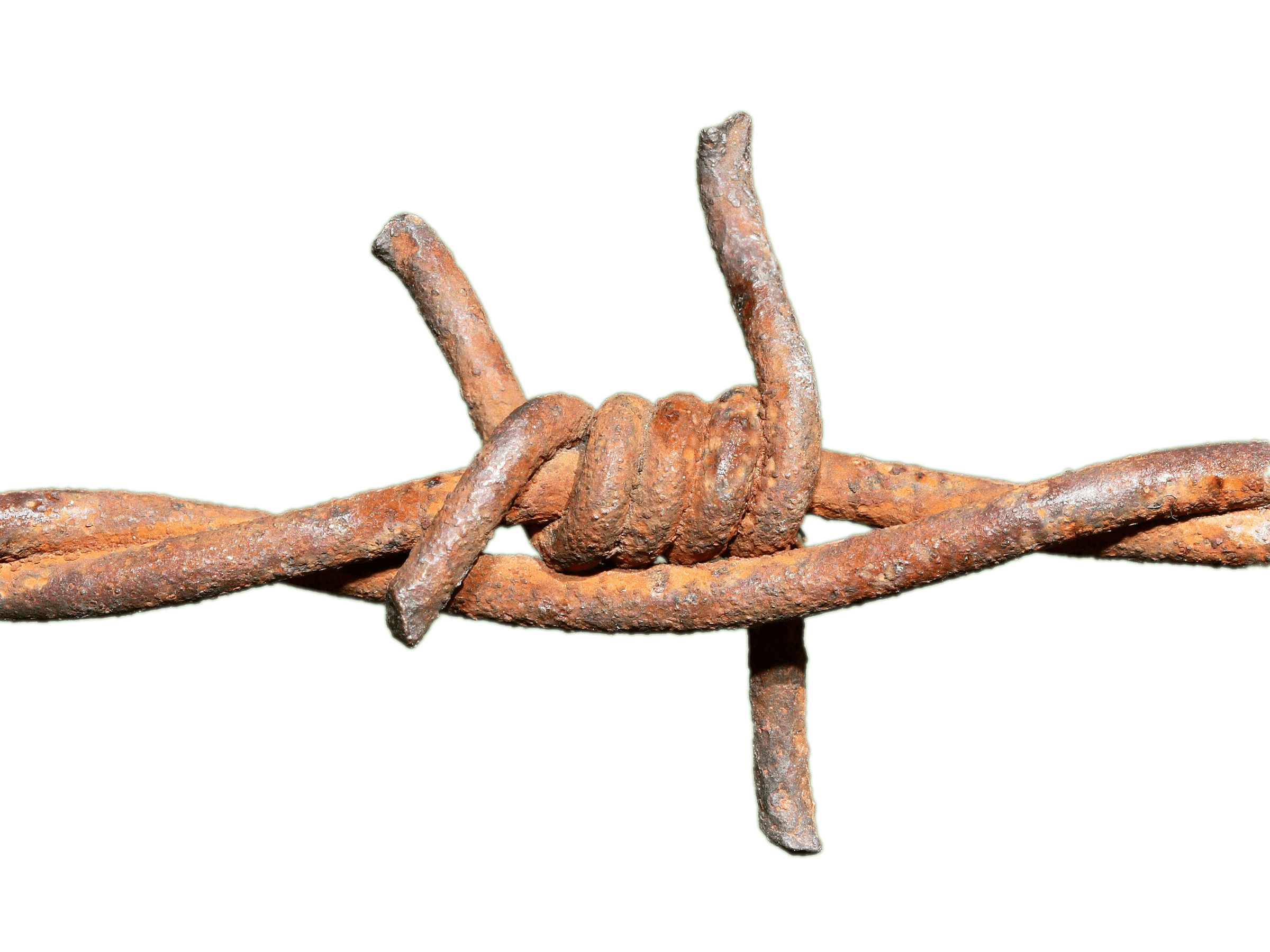 Rusted knot transparent png. Fence clipart barbed wire fence