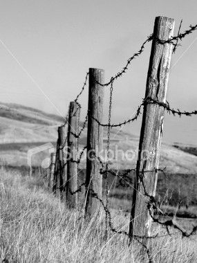 Barb wire clip art. Fencing clipart old fence