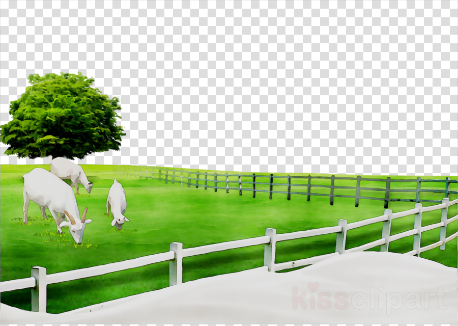 Green grass background . Fence clipart pasture fence