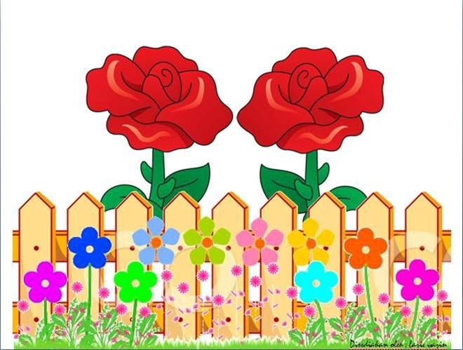 Rose fences collections flower. Fence clipart school