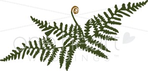 Fern clipart. Fancy wedding leaf
