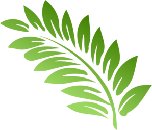 Fern clipart academic. Free cliparts download clip