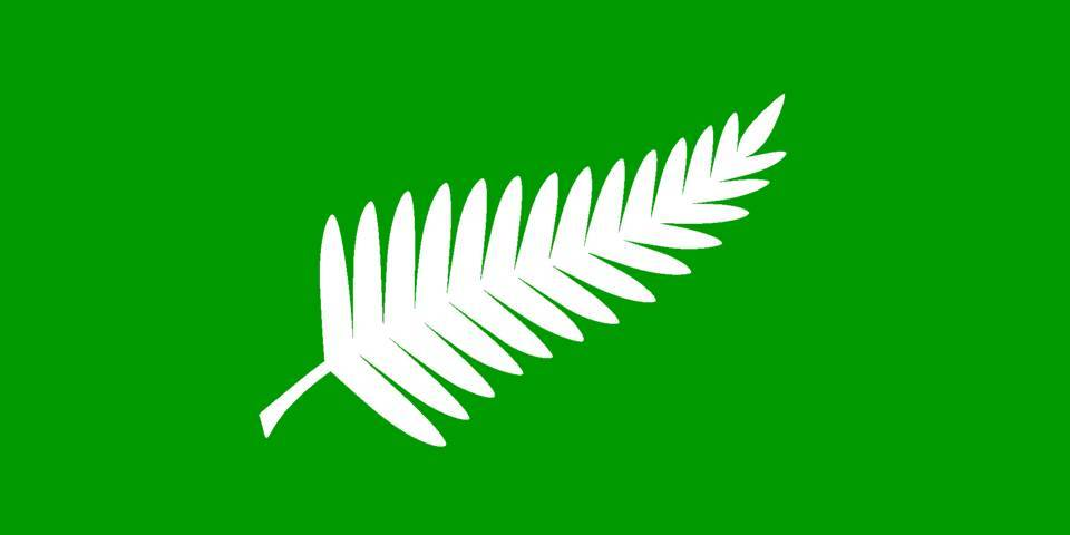 Let s fly this. Fern clipart anzac
