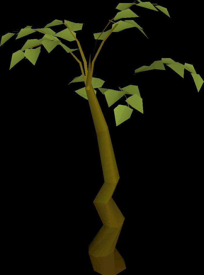 Short clipart tall tall tall tree. Plant old school runescape