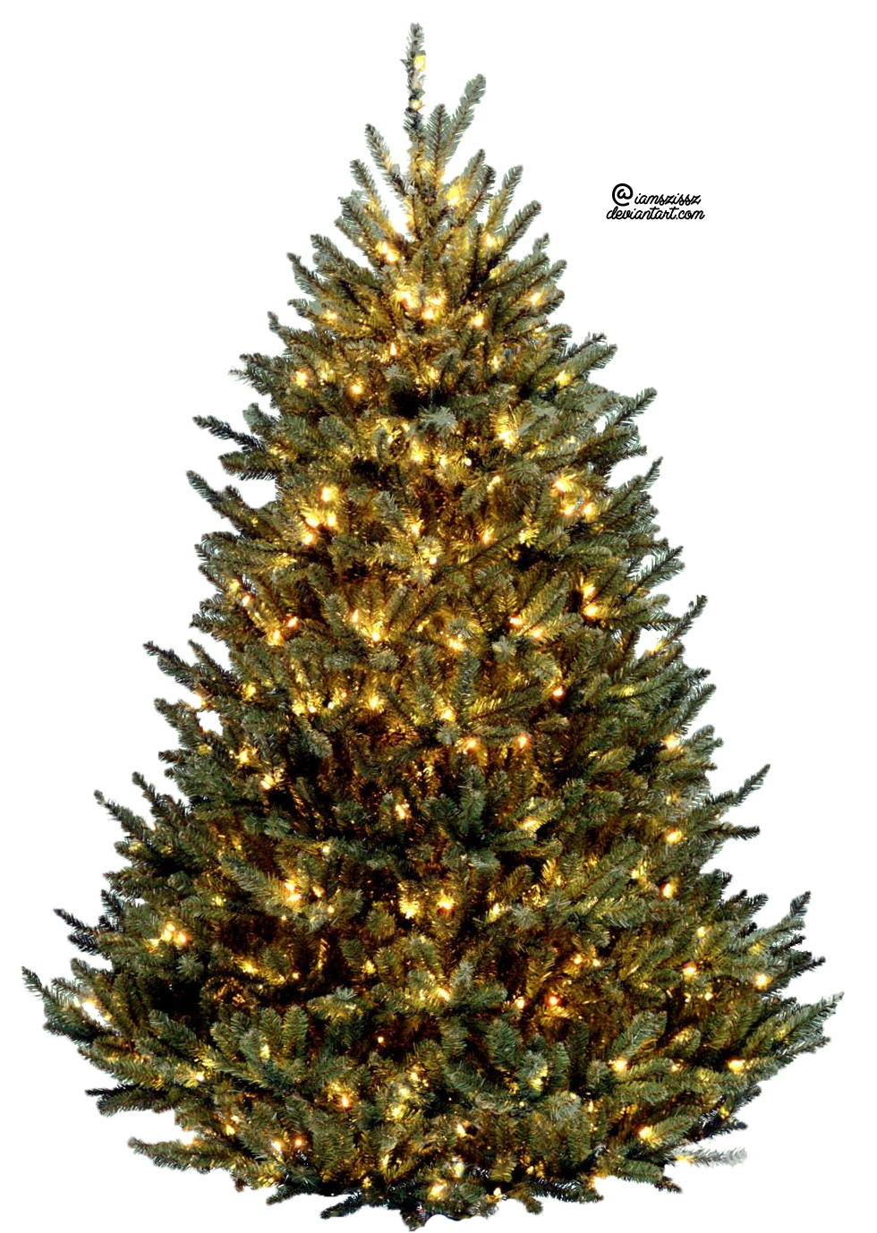 Fern clipart christmas tree. Xmas png by iamszissz