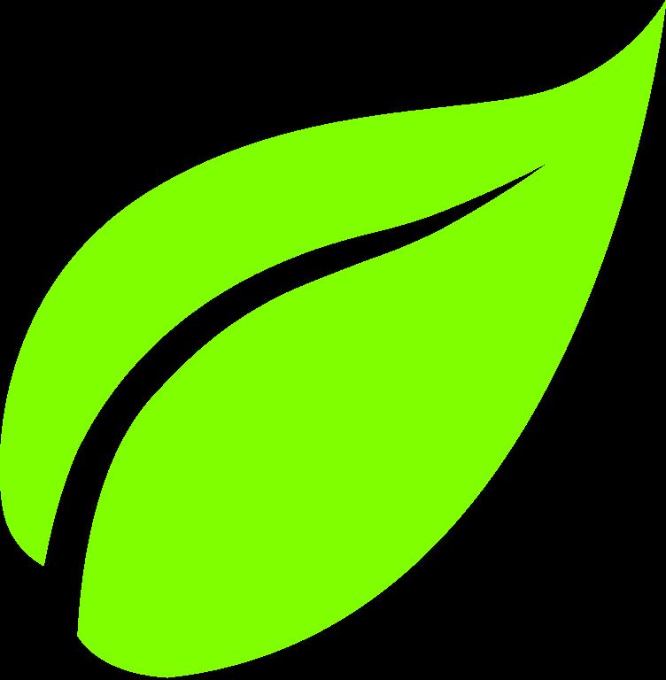 Leaf transparent png pictures. Fern clipart daun