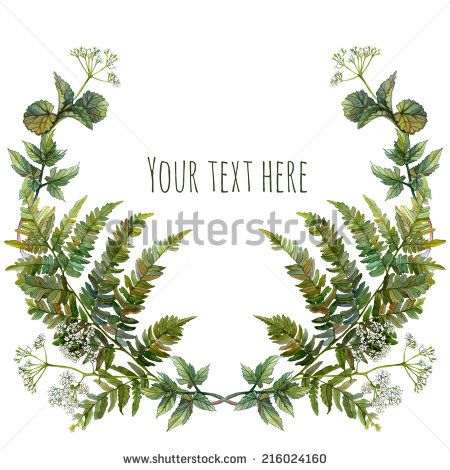 Fern clipart garland. Watercolor wreath or with