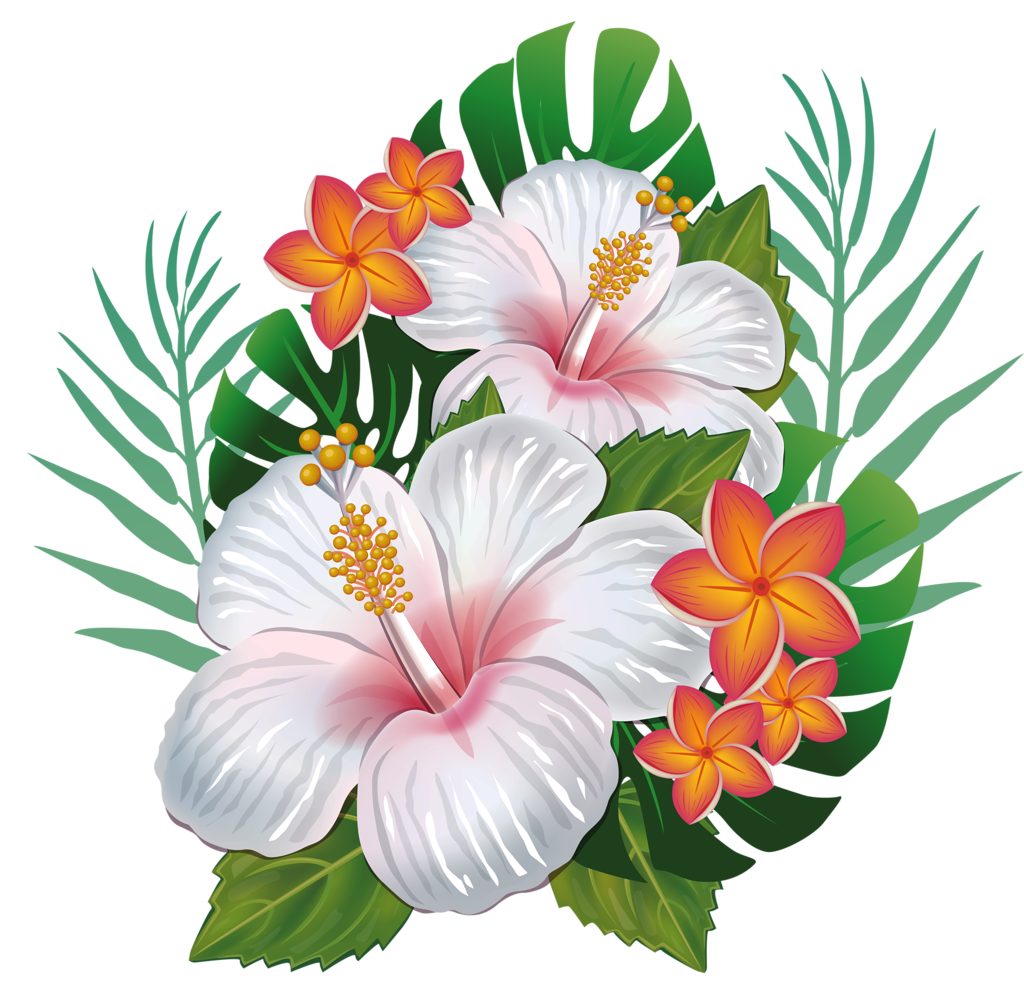 Hibiscus clipart wedding hawaii.  png pinterest tattoo